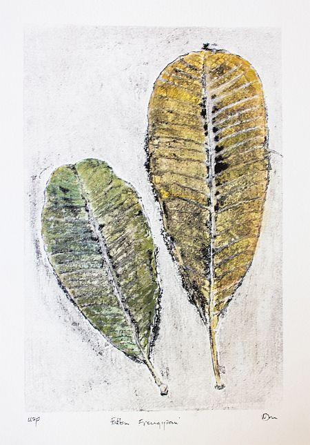 Frangipani Leaves 32 x22 cm USP ©Nada Murphy