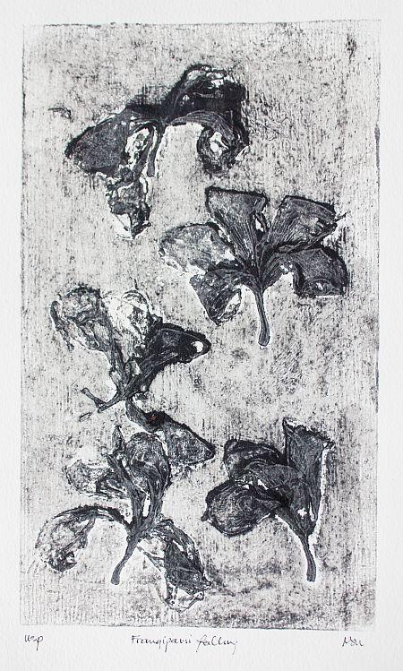 Frangipani Falling 32 x22 cm USP ©Nada Murphy