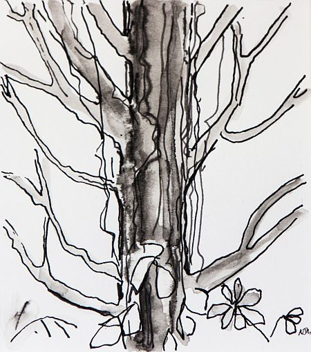 Faraway Tree 28x 30 cm card mount Ink on paper ©Nada Murphy